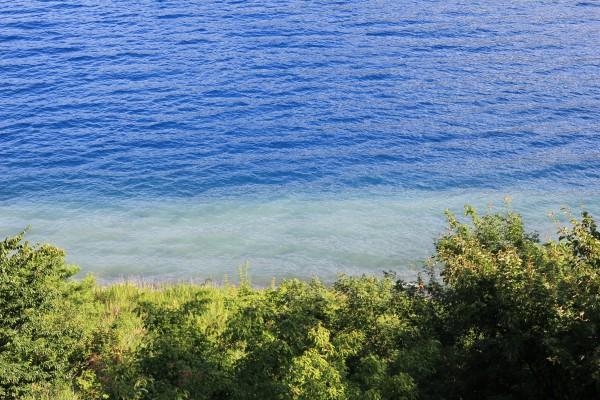 本栖湖透明度